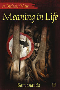 Meaning in Life book cover